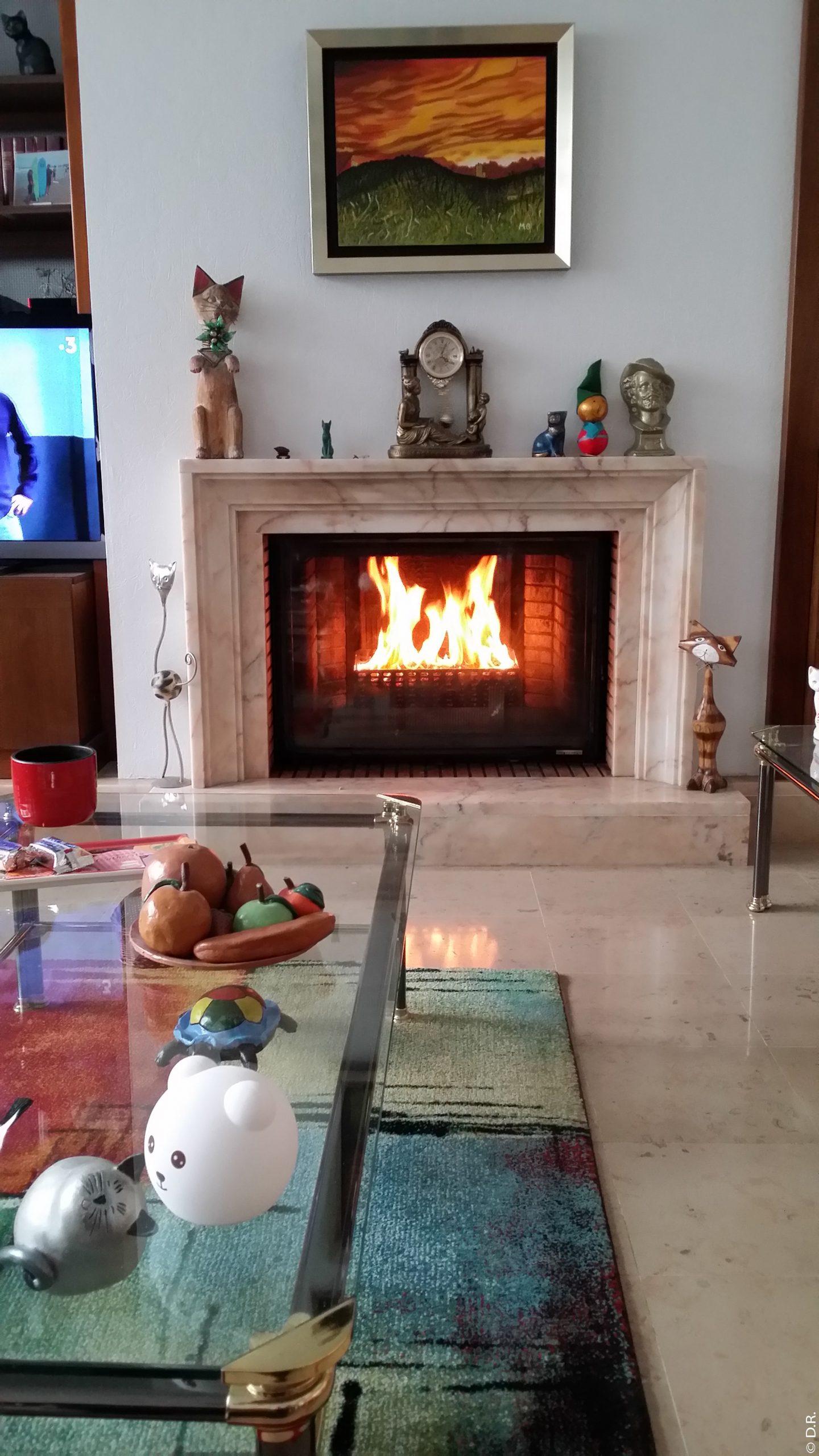BFC Confort : La simplicité du granulé de bois dans votre cheminée